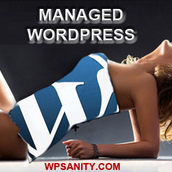 Managed WordPress Company
